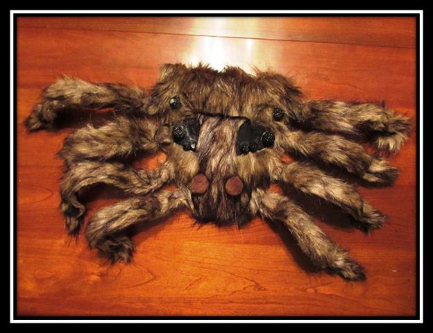 Wolf Spider Mask