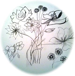 Cotton Flowers Sketch